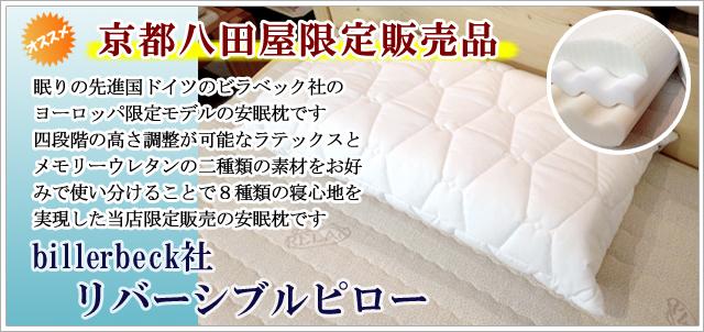 欧州限定モデルの快眠枕